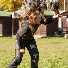 letni-vycvikovy-tabor-psi-sporty-agilty-dogfrisbee-obedience-vodni-prace